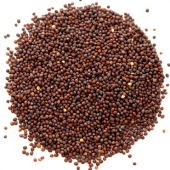 Mustard Seed, Whole Yellow, 5 Lb