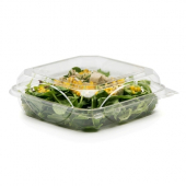 BottleBox - Food Container, 9x9 Clear Hinged PET Plastic