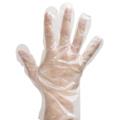 Poly Gloves, Powder Free, Large